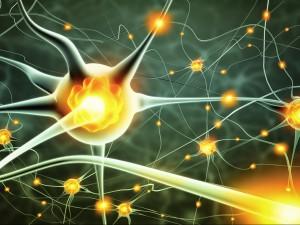 agileMaster - Synapse
